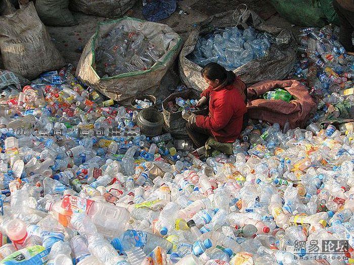 Свалка пластиковых бутылок (9 фото)