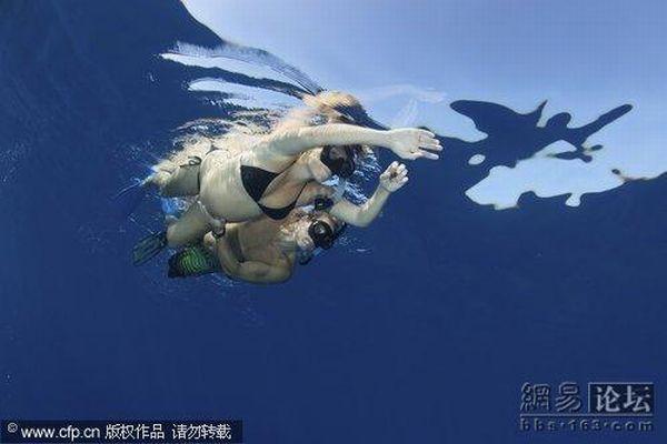 Беременные женщины плавают с дельфинами (5 фото)