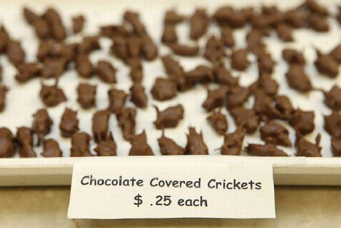 Экзотические конфеты (14 фото)