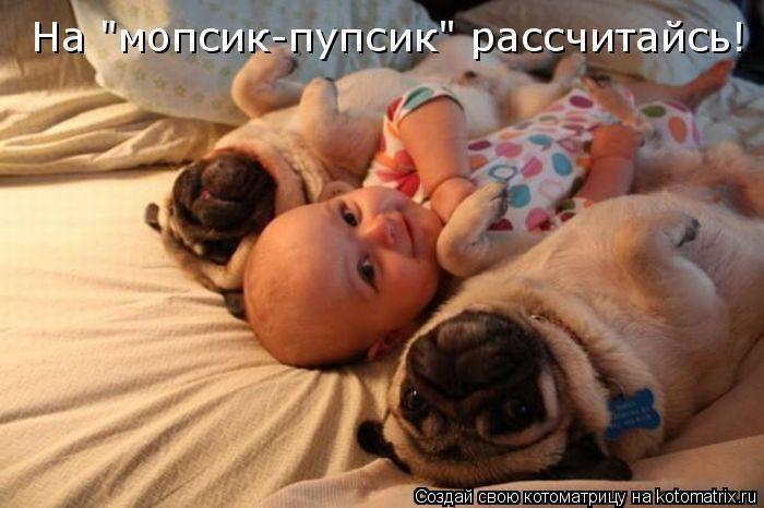 Котоматриця!)))) Kotomatrix_21