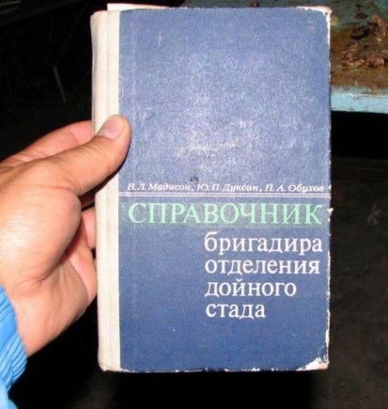 http://ru.trinixy.ru/pics4/20100201/podborka_103.jpg