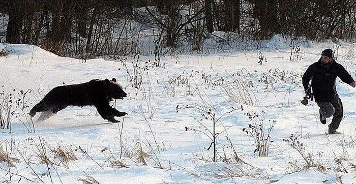 Каждый охотник должен уметь бегать (6 фото)