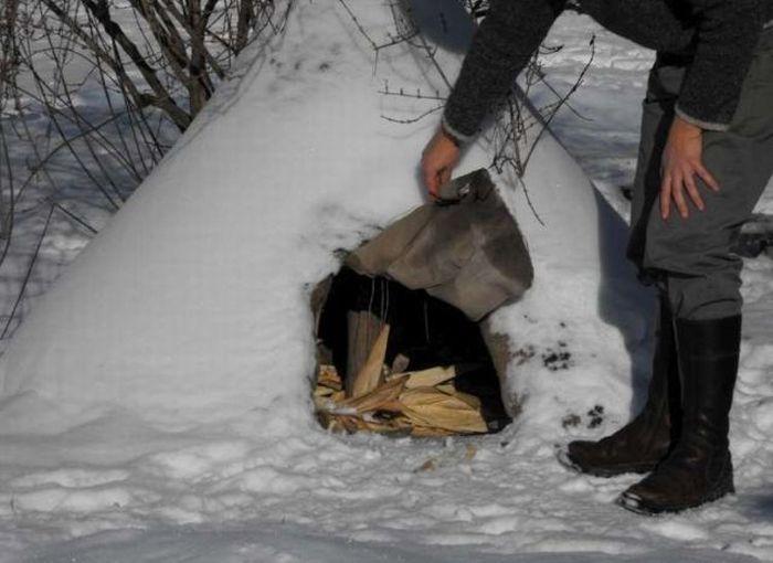 Необычная собачья конура (5 фото)