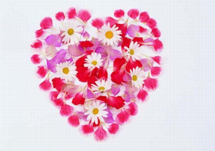 Коллекция красивых сердец (32 фото)
