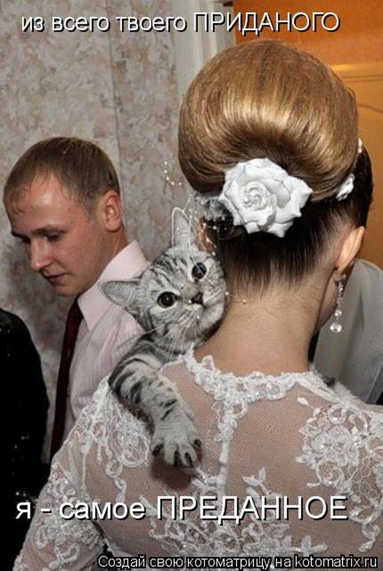 модели всего зачем удачно выходить замуж тетки большие