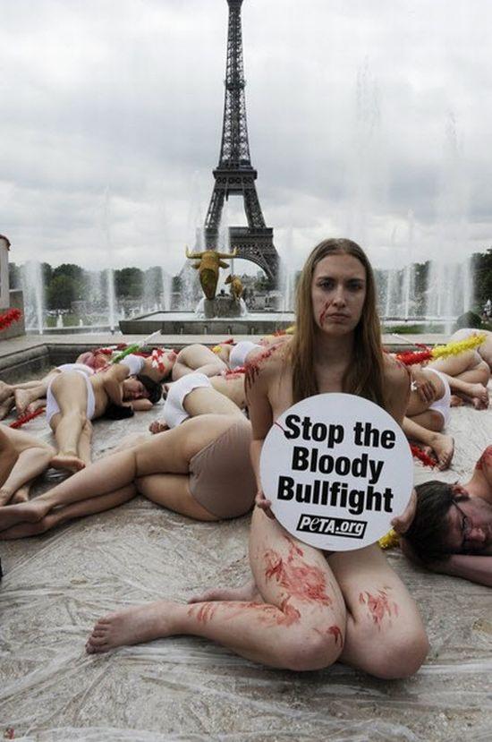 Голый протест (15 фото)