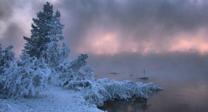 Прекрасная зима (29 фото)