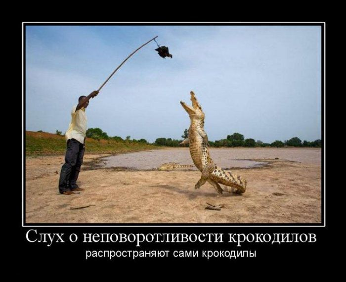 Демотиваторы (140 фото)