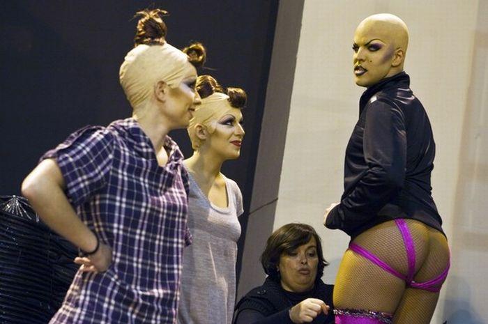 Шоу трансвеститов 2010 (20 фото)