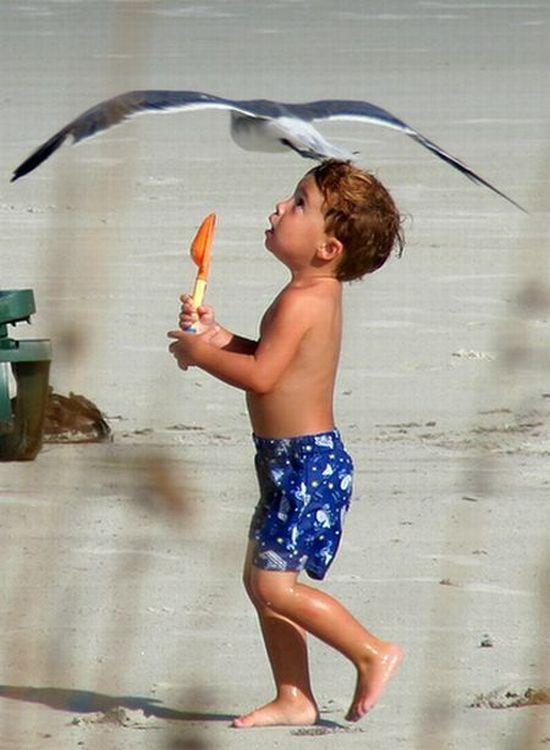 Прикольные картинки про лето каникулы