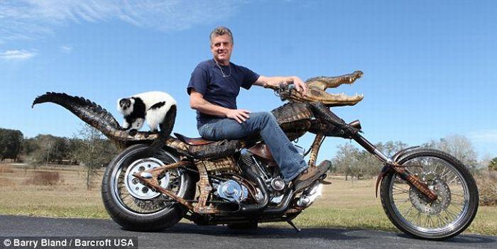 Жуткий мотоцикл (3 фото)