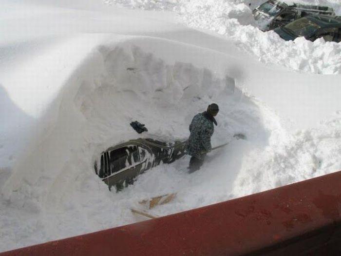 Снежная зима (46 фото)