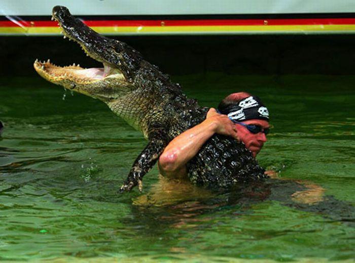 Игры с крокодилами (15 фото)