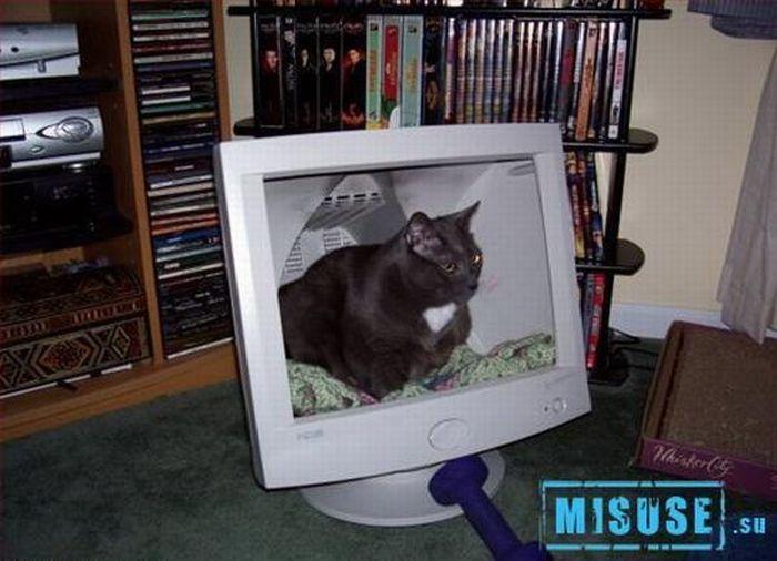 http://ru.trinixy.ru/pics4/20100316/unusual_use_of_ordinary_things_04.jpg