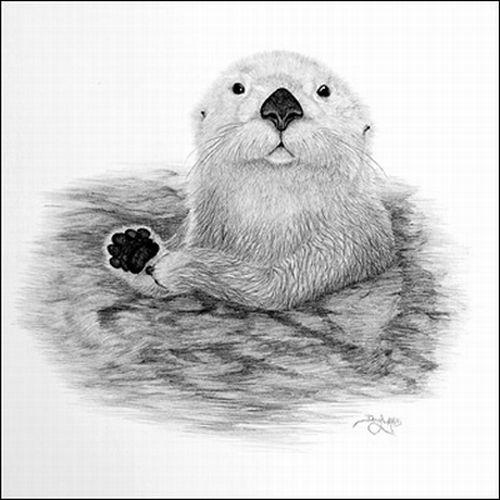 Рисунки карандашом Дуга Лэндиса (12 фото)