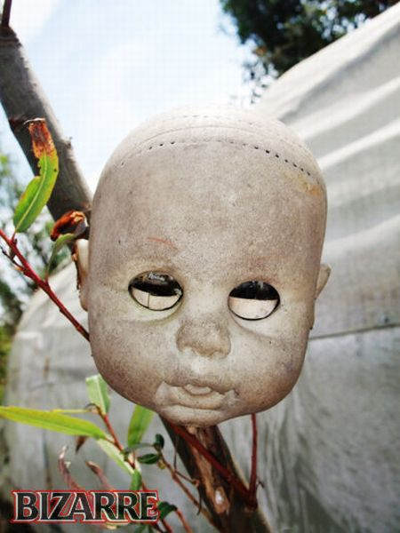 Остров страшных кукол (17 фото)