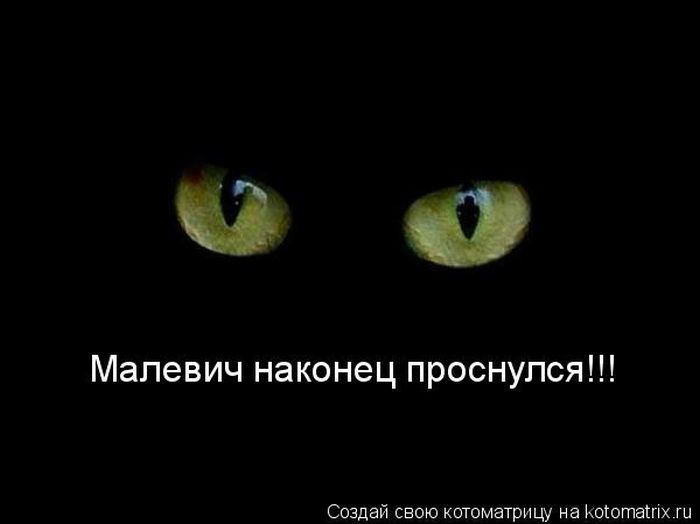 http://ru.trinixy.ru/pics4/20100326/kotomarrix_27.jpg