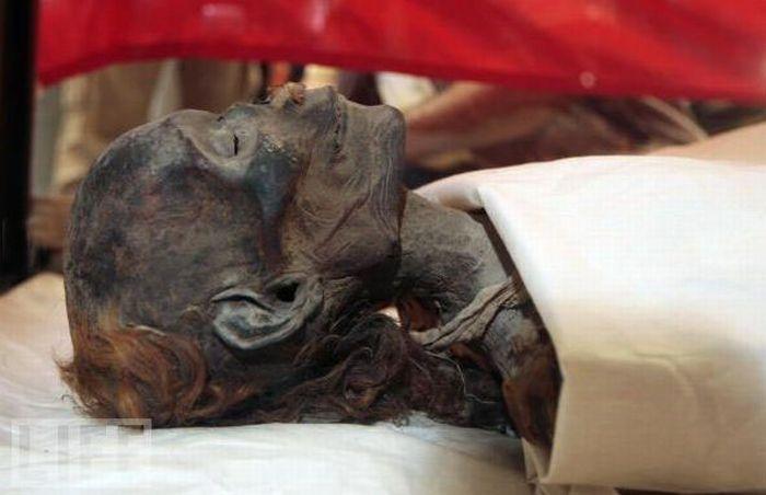 Знаменитые мумии (23 фото)