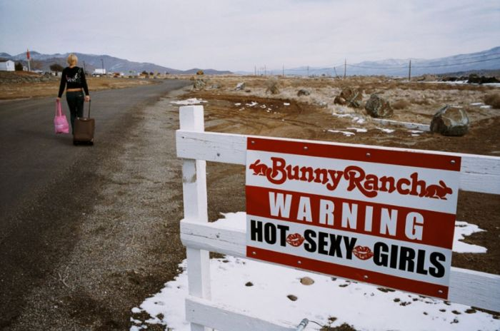 Бордель Moonlite BunnyRanch (31 фото)
