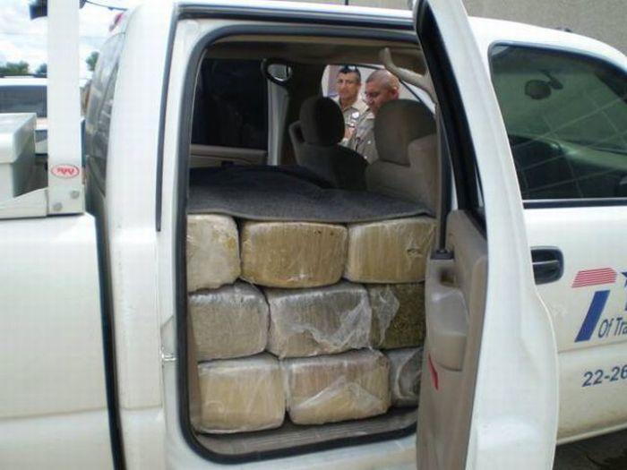 Полный автомобиль марихуаны (6 фото)
