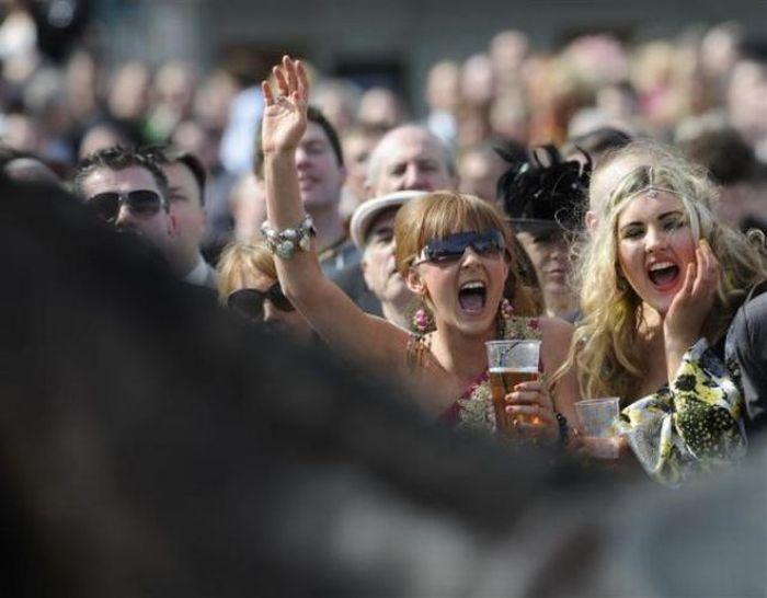 Конные бега в Ливерпуле (23 фото)