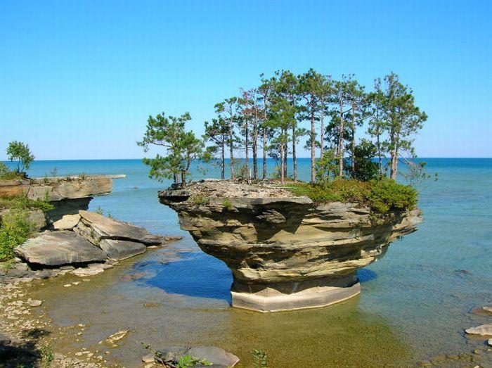 Остров-репа (25 фото)