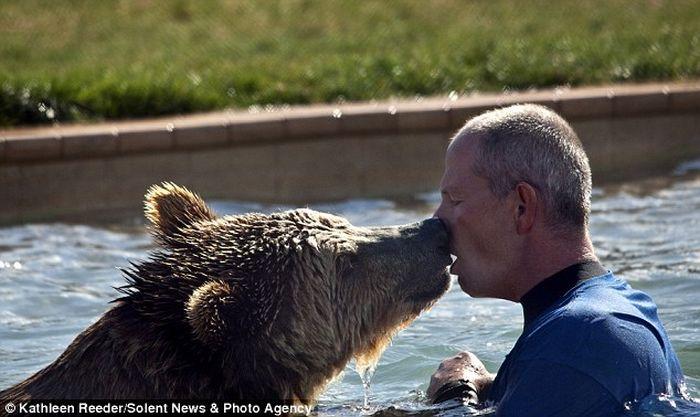 Работник зоопарка играет с медвежатами-гризли (6 фото)