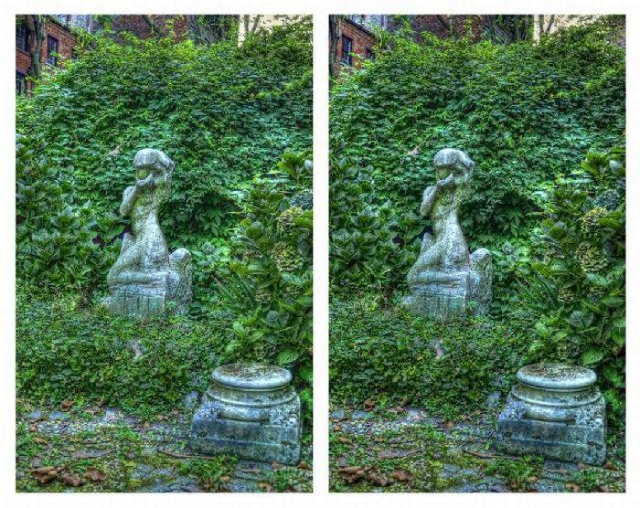 3D фотографии (37 фото)