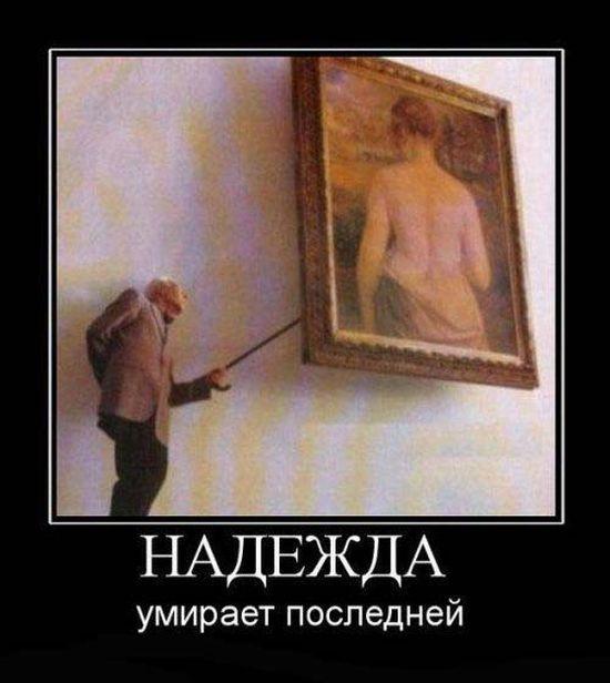 Демотиваторы (171 фото)