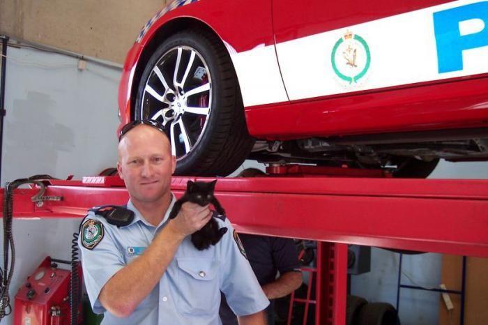 Маленький сюрприз в полицейской машине (3 фото)