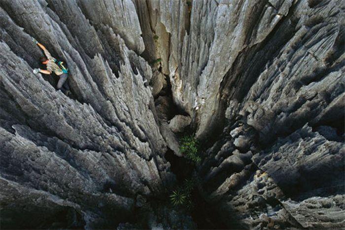 En Güzel National Geofragia Fotografları(48 Fotograf)