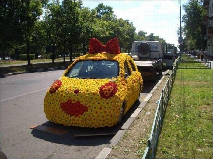 Смешные ситуации на дорогах (50 фото)