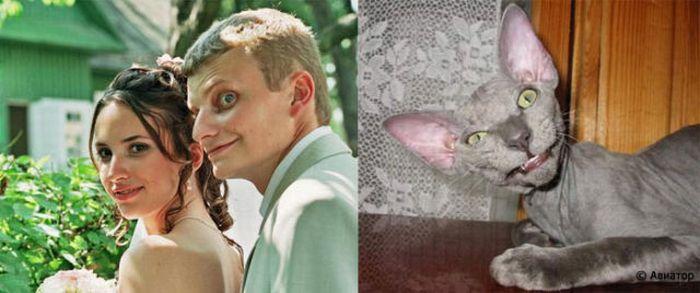 Посмотрите, как они похожи. Часть 2 (23 фото)