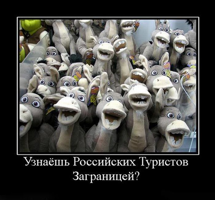 Демотиваторы (129 фото)