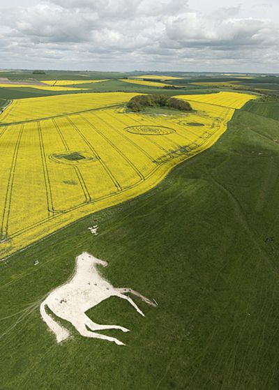 Узоры на полях (57 фото)