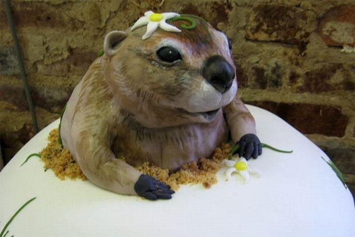 Торты в виде приколов фото
