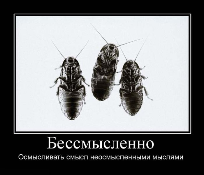 Демотиваторы (166 фото)