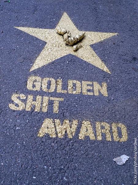 Golden Shit Award в Питере (8 фото)