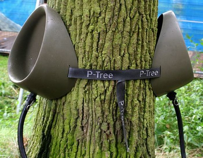 Писсуар на дереве (4 фото)