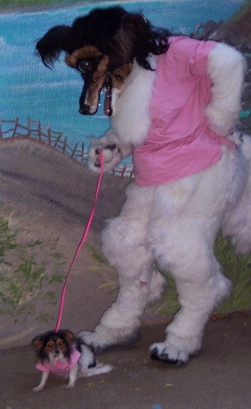 Худший костюм животного (4 фото)