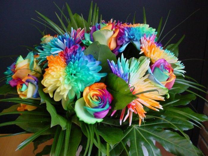 http://cdn.trinixy.ru/pics4/20100607/colorful_flowers_14.jpg