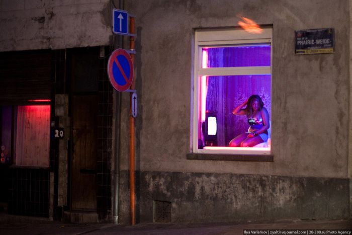 Районы красных фонарей Брюсселя и Амстердама (39 фото)