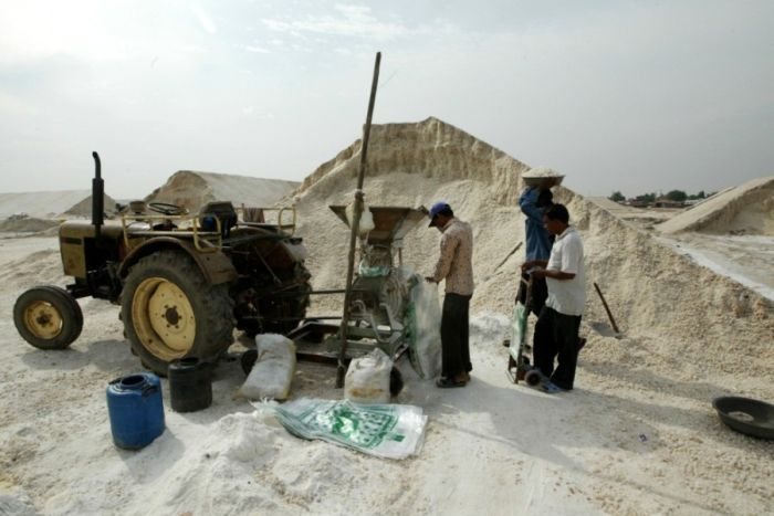 Добыча соли в Индии и Индонезии (28 фото)