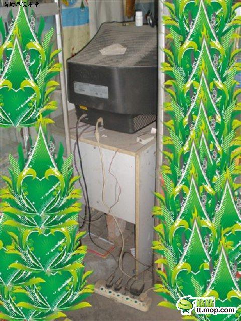 Худшее интернет-кафе в мире (6 фото)