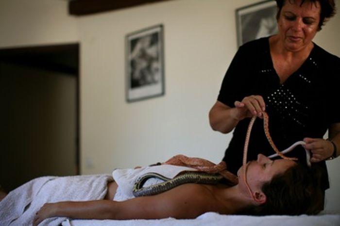 Змеиный массаж (13 фото)