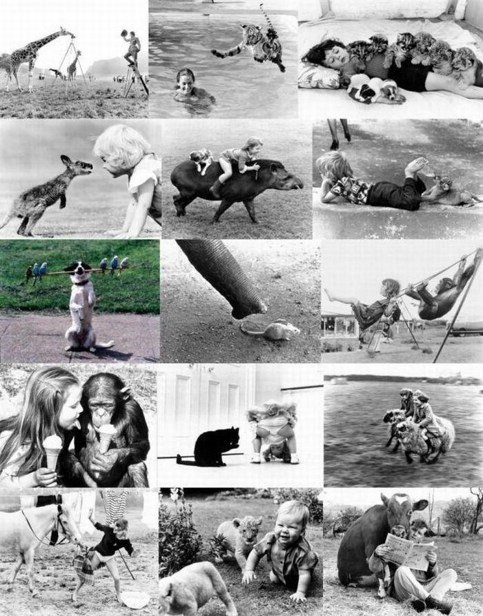 Прикольные картинки (203 фото)