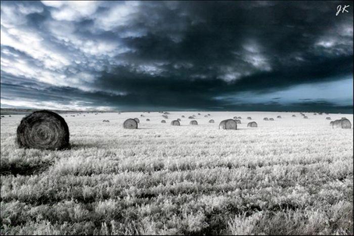 Инфракрасные фотографии (32 фото)