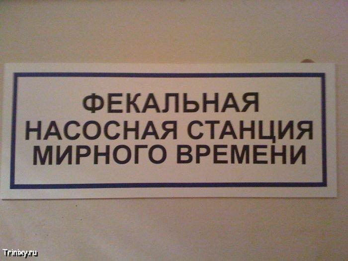 Присланное (87 фото)