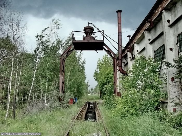 Заброшенные поезда (42 фото)