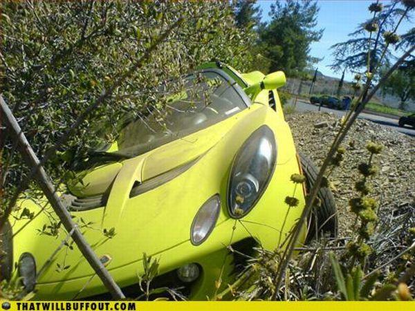 Автомобили в неприятных ситуациях (75 фото)